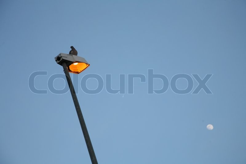 Electric light from public street and moon, stock photo