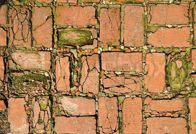 Background texture brick paving mosaic concrete pavement of the road, stock photo