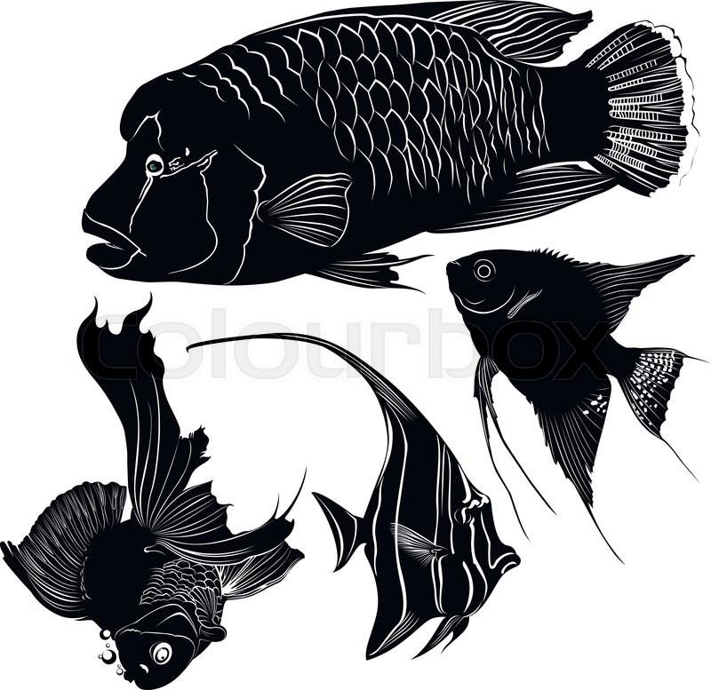 Aquarium Fish Stock Vector Colourbox