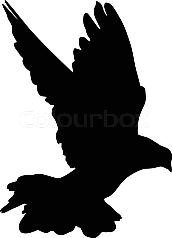 Silhouette of a flying dove on a white       Stock vector