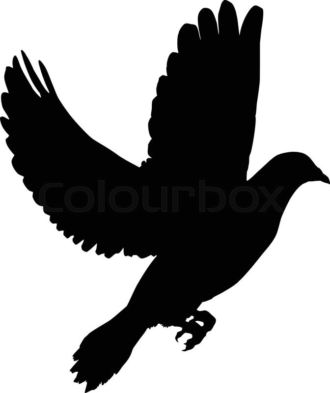 Silhouette of a flying dove on a white     | Stock vector