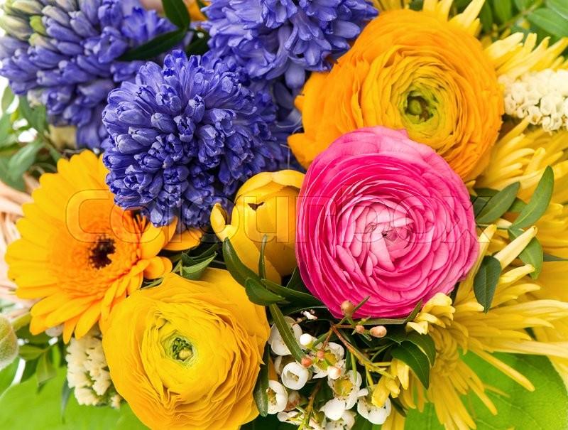 Spring flowers. Bouquet of ranunculus, hyacinth, gerber, foliage ...