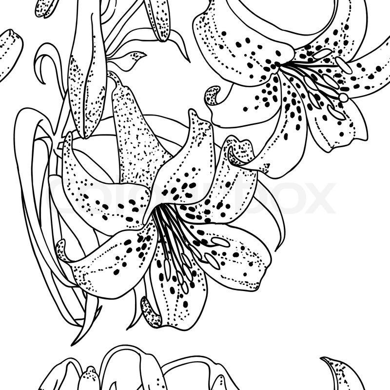 Schwarze Tapete Mit Wei?en Blumen : Nahtlose Tapete mit Lily Blumen Stock-Vektor Colourbox
