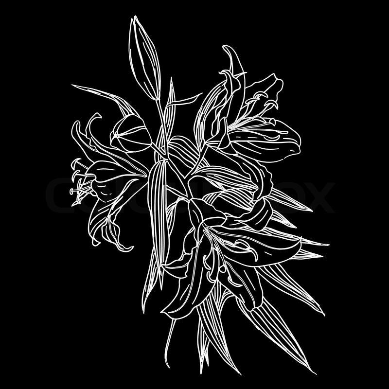 Schwarze Tapete Mit Wei?en Blumen : Black Flower White Background
