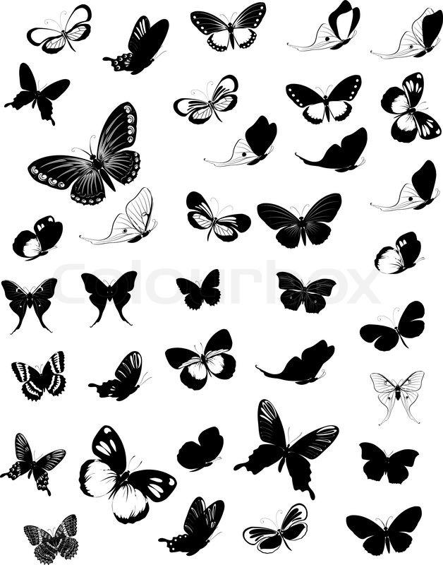 set of butterflies stock vector colourbox. Black Bedroom Furniture Sets. Home Design Ideas