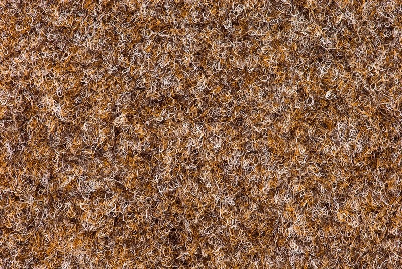 Texture Of Carpet Coverage Of Brown Color With A Shallow