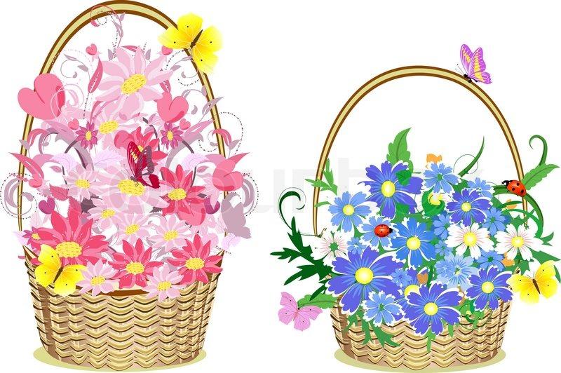 Flower Baskets Vector : Flower baskets stock vector colourbox