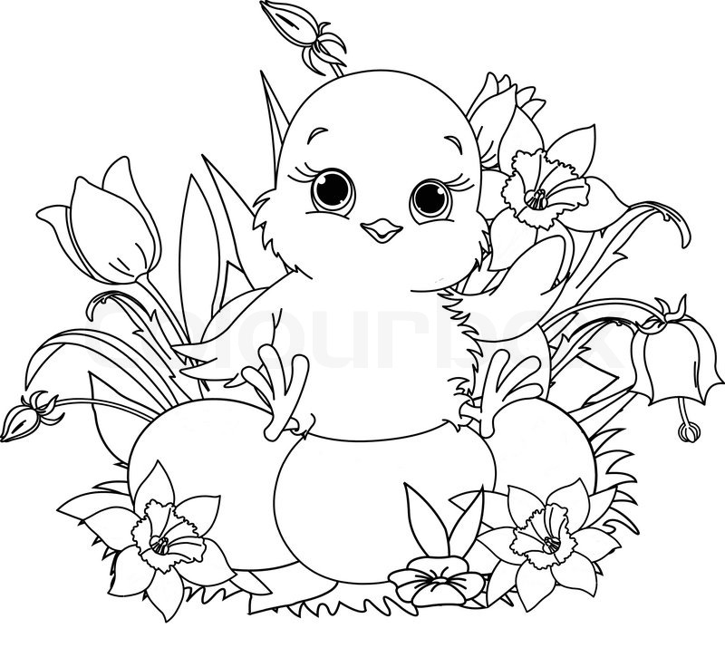 Newborn chick sitting on Easter eggs . Coloring page | Stock ...