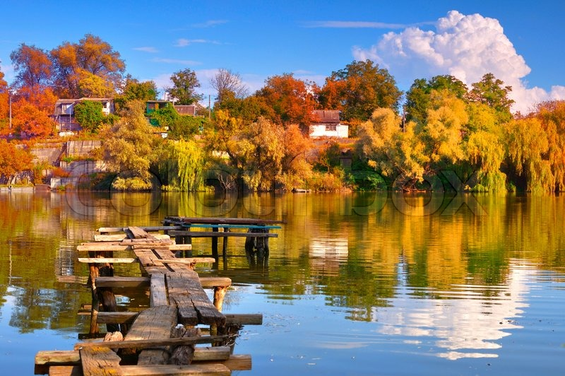 Colorful Autumn Trees Reflected At The Lake Image 1666571