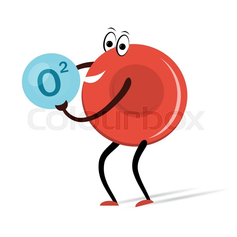 Vector Illustration Drawing Red Blood Cell With Oxygen Cartoon