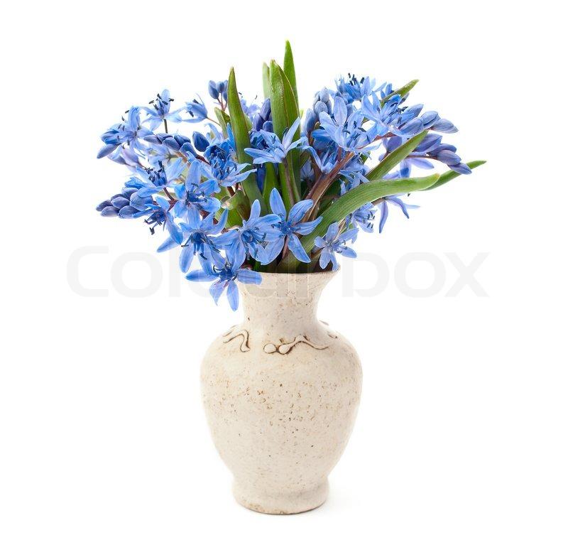 vase mit blumen auf einem wei en hintergrund stockfoto colourbox. Black Bedroom Furniture Sets. Home Design Ideas