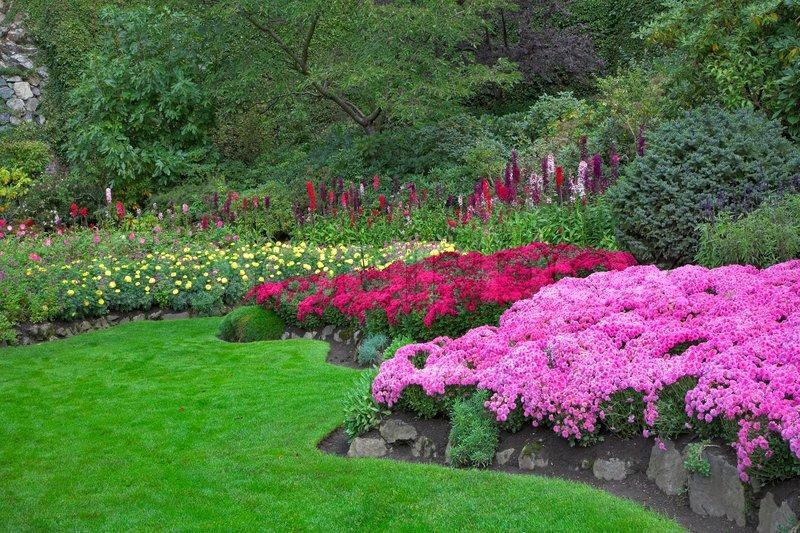 Stock foto af fænomenalt smukke og maleriske have til gåture og