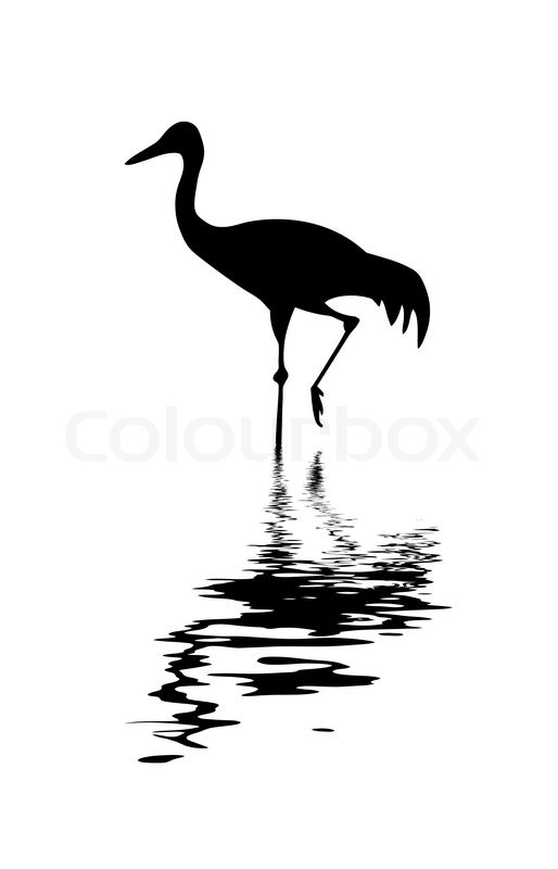 Silhouette Of The Crane Amongst Water Stock Vector