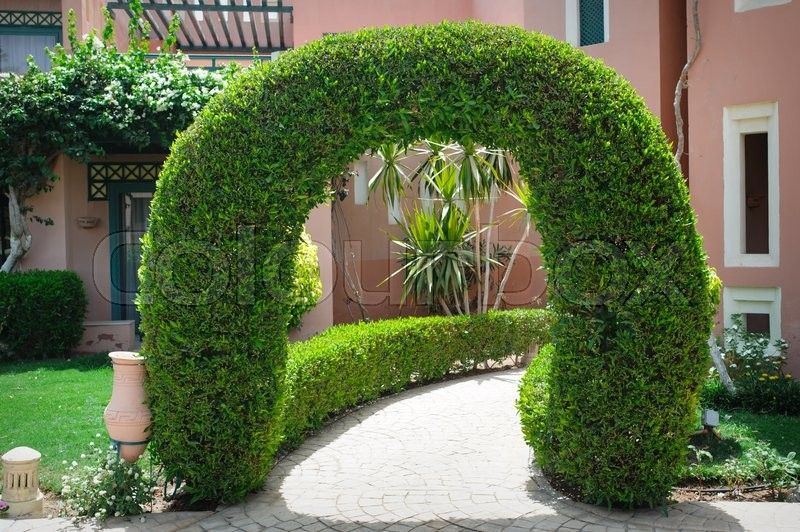 Beautiful green arch with decorative tree at the hotel, stock photo