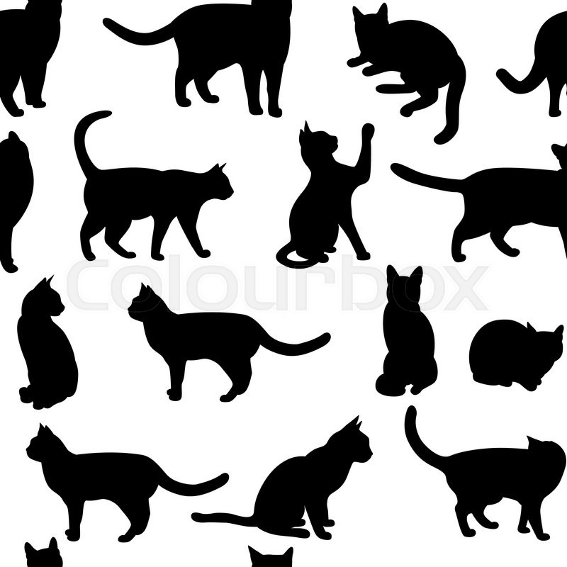 Out Of  Cats Repeated