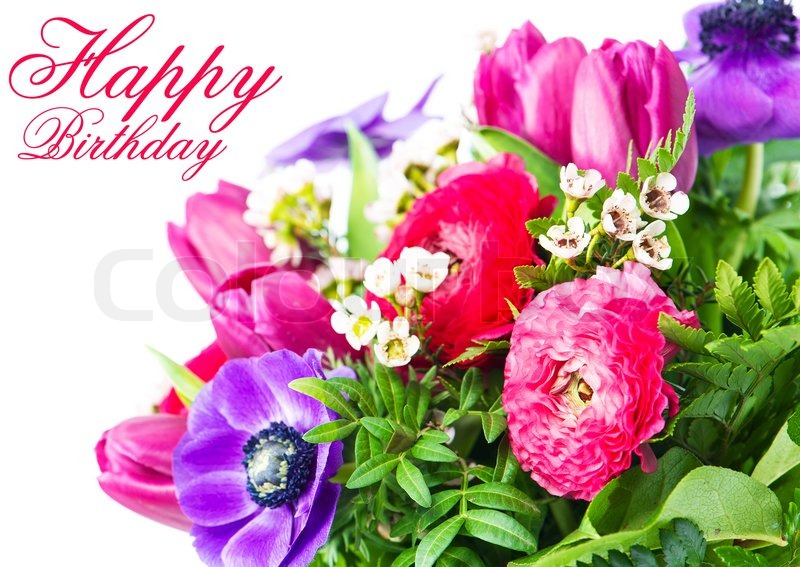 happy birthday. card with colorful flowers.  stock photo  colourbox, Natural flower