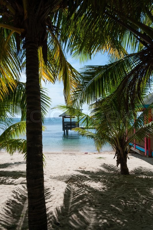 Small Wooden Hut On Stilts In The Sea At The White Sand Beach Hiding Behind  Palm Trees On Roatan Island In Honduras | Stock Photo | Colourbox