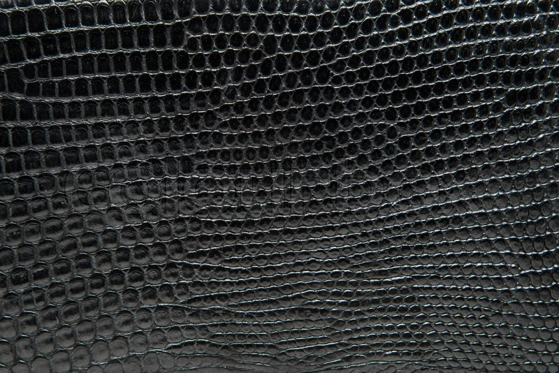 Black Reptile Leather Texture Background Stock Photo