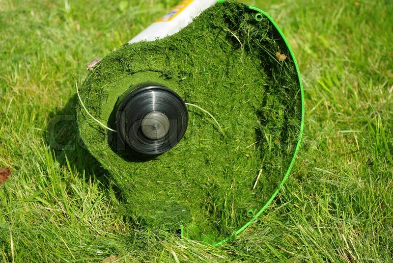 Lawntrimmer after work on green grass in garden, stock photo