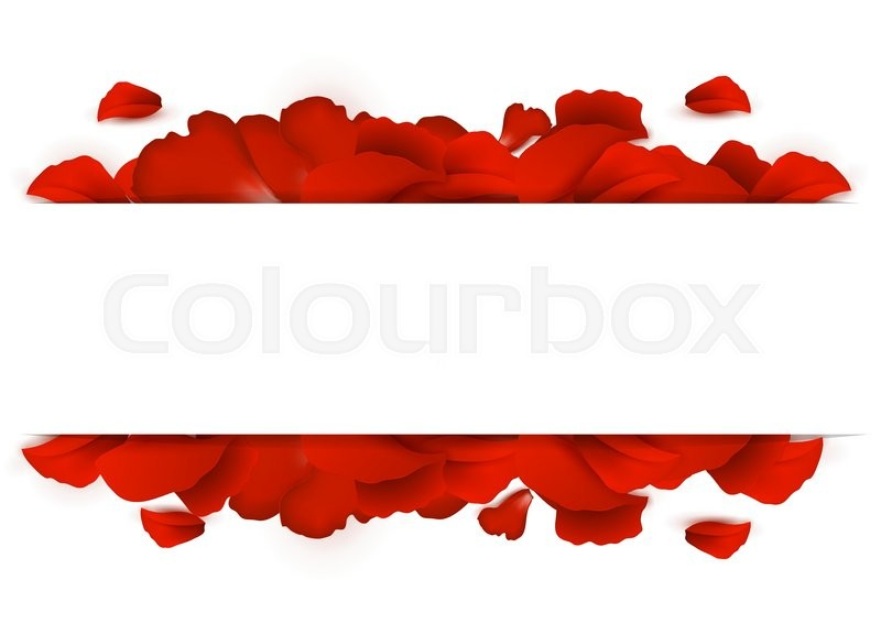 Border of red rose petals on a white background | Stock Vector ...