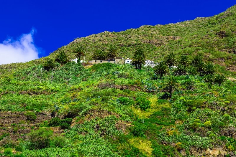 Small Village and Buildings in Green Mountains Landscape on Canary Island in Spain at Day, stock photo