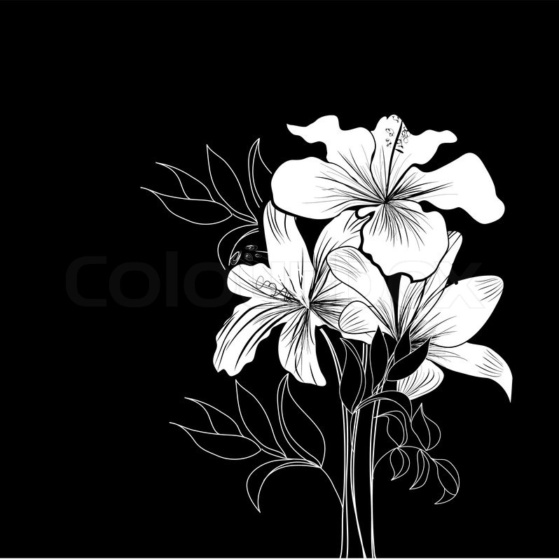 Black and white background with white flowers stock vector colourbox mightylinksfo
