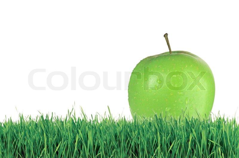 apple fruit background grass - photo #19