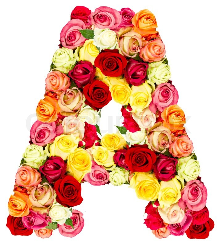 A, roses flower alphabet isolated on white | Stock Photo ...