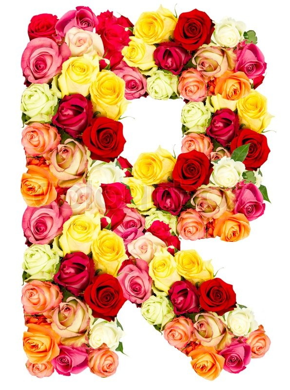 R roses flower alphabet isolated on white stock photo colourbox altavistaventures Choice Image
