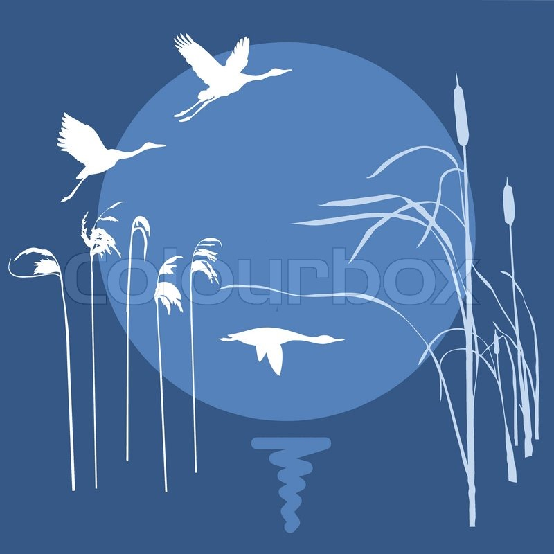 How to Draw a Bird Flying Simple Vector Drawing Flying Birds on