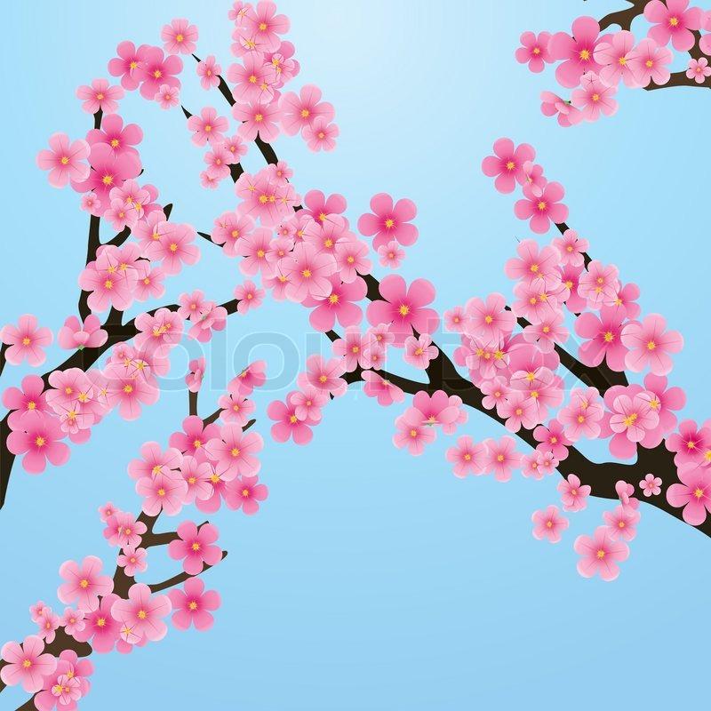 kinesiske blomster
