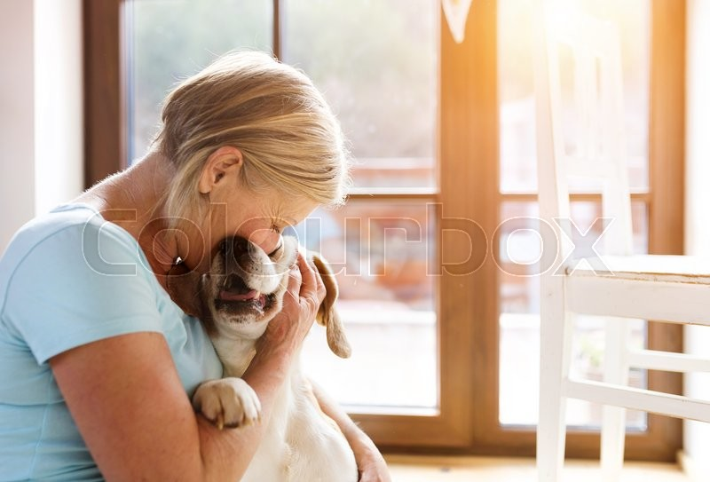 Senior woman with her dog inside of her house, stock photo