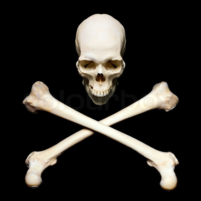 Real Human Skull With Srossed Bones Stock Photo Colourbox