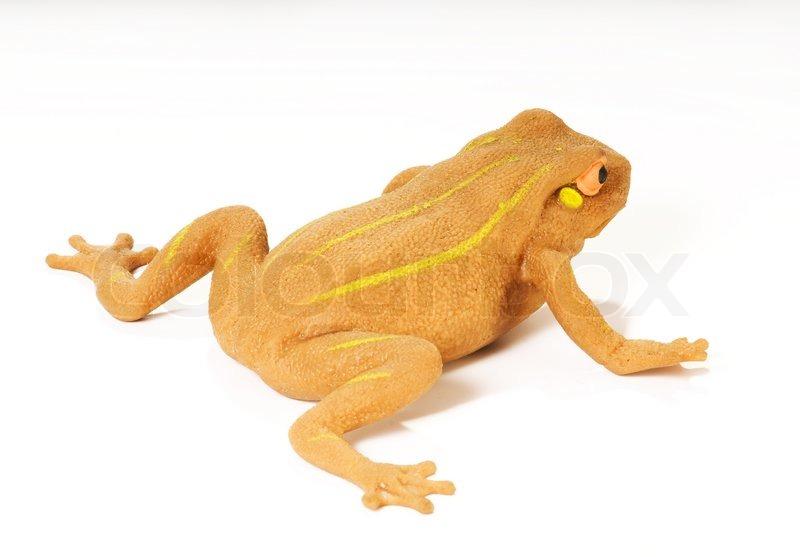 Isolierten gelben Frosch mit striped auf weißem Hintergrund ...