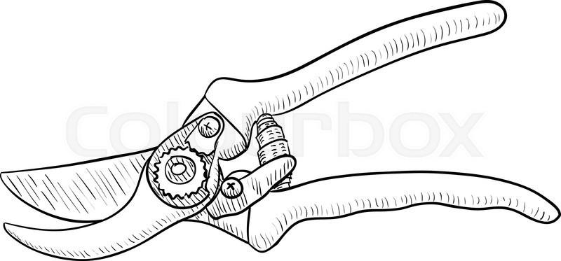 Pruning Shear, Gardening Tool, Drawing, Vector illustration   Stock ...