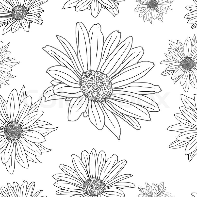 Set Of Black Flower Design Elements From My Big Floral: Hand Drawn Floral Wallpaper With Set ...