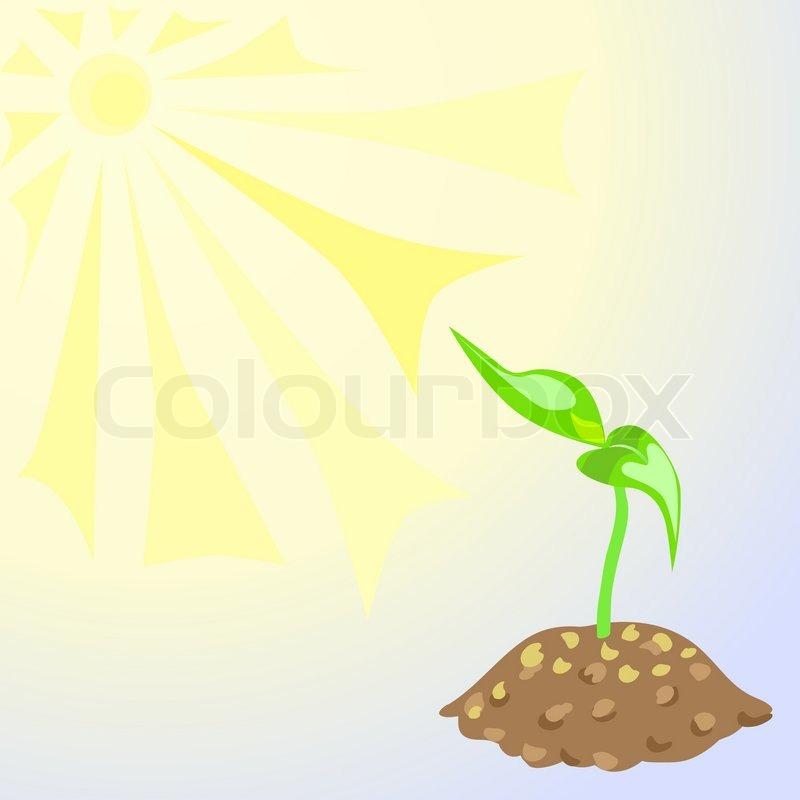 junge pflanze mit zwei bl ttern unter der sonne zu schie en stock vektor colourbox. Black Bedroom Furniture Sets. Home Design Ideas
