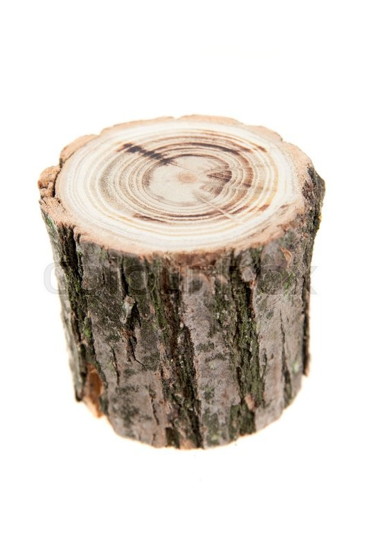 Tree Stump Isolated On White Stock Photo Colourbox