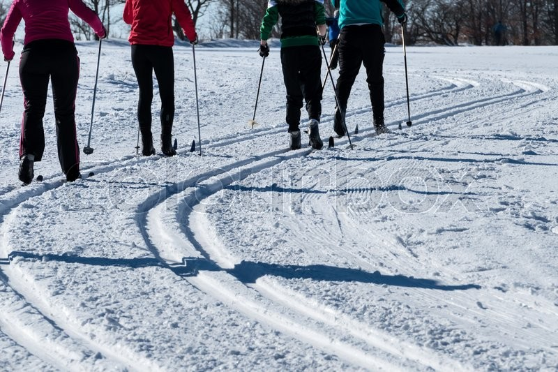 Winter sports cross-country skiing, icon sports, winter holidays, leisure, activity, stock photo
