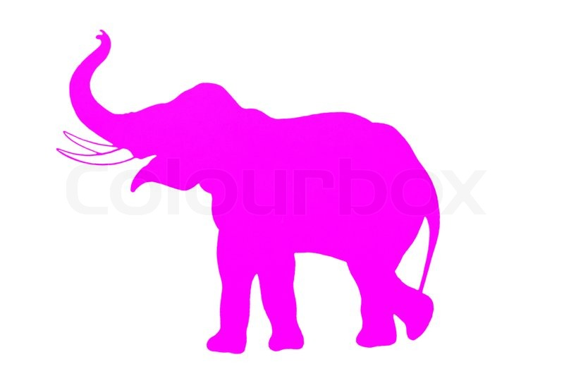Elephant  Pink silhouette    Stock image   Colourbox