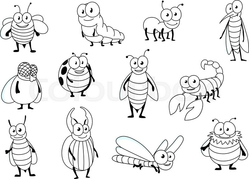 funny cartoon outline colorless bee ant ladybug fly caterpillar