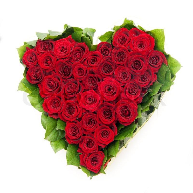 Rote Rosen Med