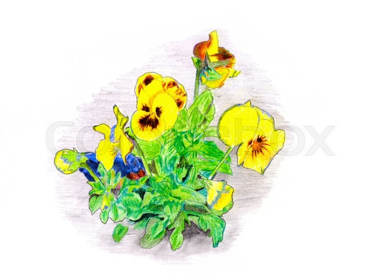 Stock image of 'Hand color drawn flowers bouquet Raster 1'