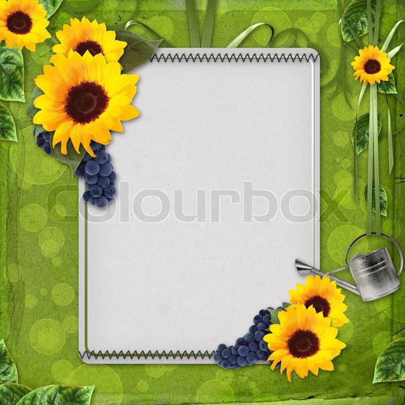 sommer gru karte mit sonnenblumen und trauben stockfoto colourbox. Black Bedroom Furniture Sets. Home Design Ideas