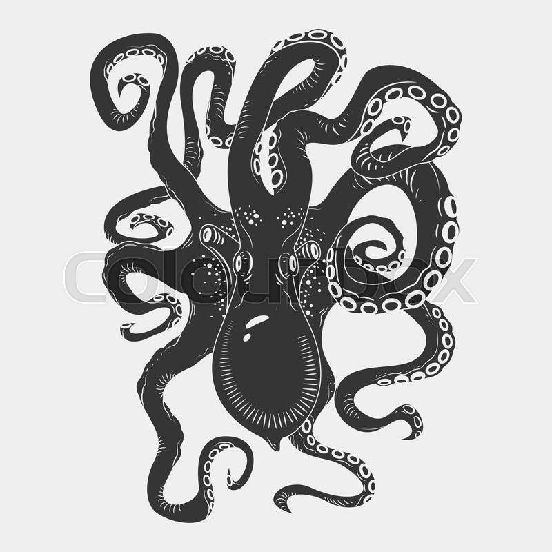 Vintage Kraken Illustration Black danger cartoon o...