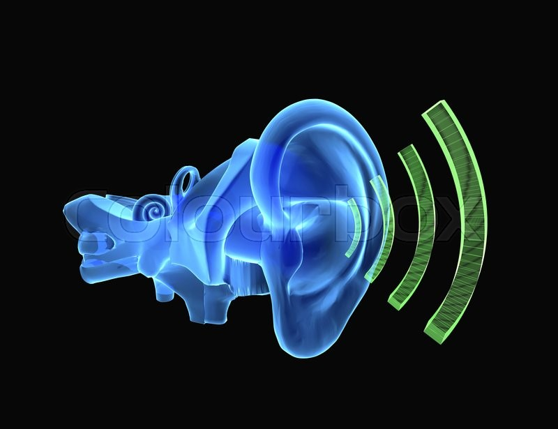 3d Illustration Of Ear Anatomy With Sound Coming Stock Photo