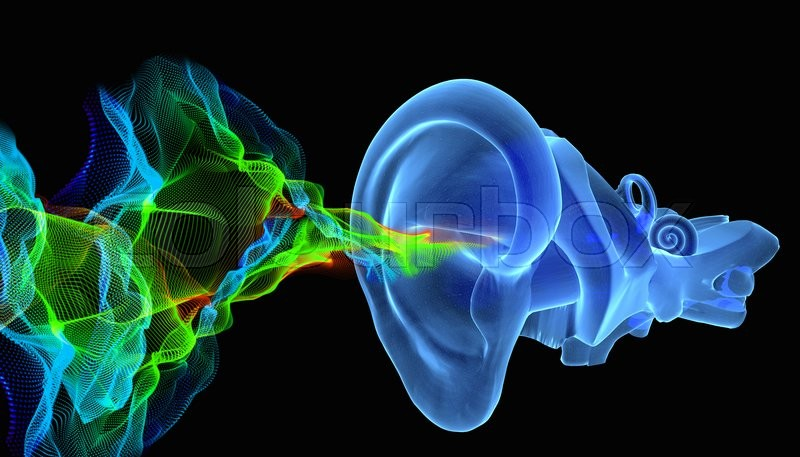 3d Illustration Of Ear Anatomy With Music Or Sound Coming Stock