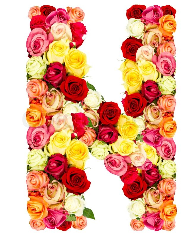 N, roses flower alphabet isolated on white | Stock Photo ...