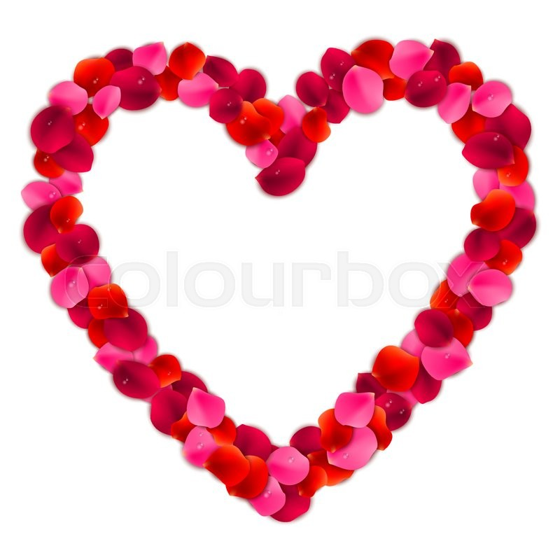 Heart shaped frame or border made of red and pink rose flower petals ...