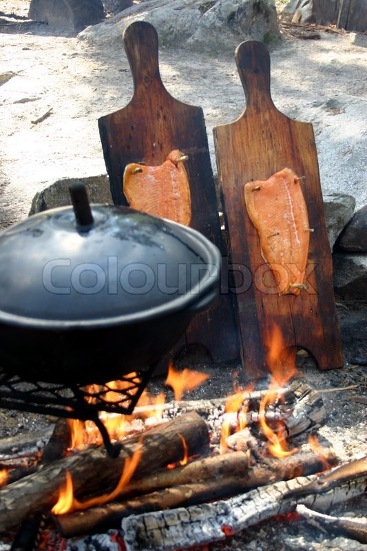 Cooking Fish By Camp Fire